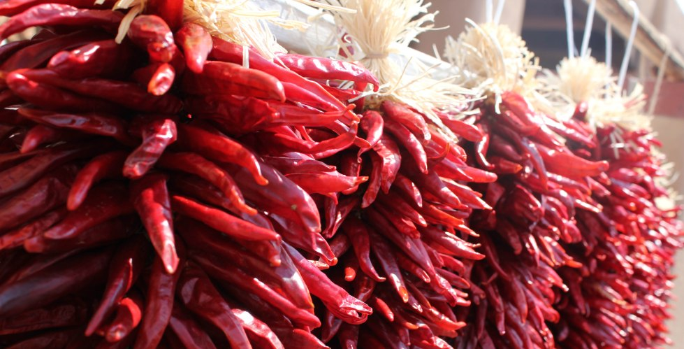 new-mexican-chili-peppers